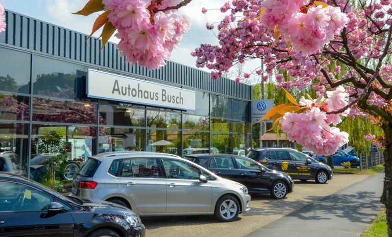 Autohaus Busch Vorne Lunestedt